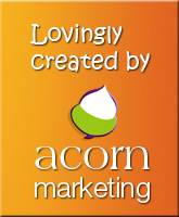 Acorn Marketing - specialists in SME marketing and website design in Gloucestershire